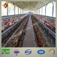 poultry farm of steel structure
