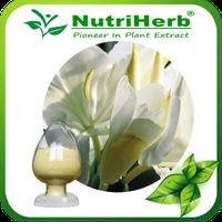 Sophora Japonica Extract/Rhizoma Kaempferiae Extract Kaempferol 98%