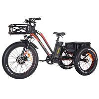 Addmotor MOTAN M-350 P7 Electric 3 Wheel Bike Trike