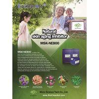 Natural Skin Anti-aging Inhibitor (MSK-NE800)