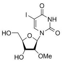 5-Iodo-2'-OMe-2'-deoxyuridine