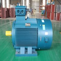 Y Series Three- phase Asynchronous Motor