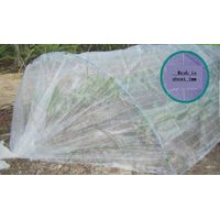 Anti insect net thumbnail image