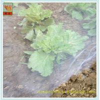 Agriculture & Farming - Plant and crops protection-Anti insects mesh, insect netting,PE Woven Nettin thumbnail image