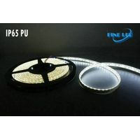 LED Flexible Strip Light FL-12FS-120/IP20