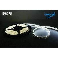 LED Flexible Strip Light FL-12FS-120/IP20