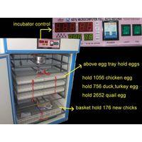 cheap egg hatching machine for duck