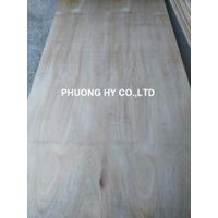 Sell Eucalyptus plywood 4x8 use for packing