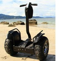 Two Wheel Self Balancing Electric Scooter,China Electric Chariot