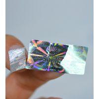 Hologram Destructible Label