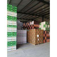 Insecticide Nitenpyram 95%tc 50% Sg Cas No.: 120738-89-8 thumbnail image