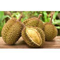 Fresh Durian from Vietnam Premium Grade thumbnail image
