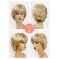 Female / Synthetic Wig Style No. 3382 124/Short/Straight
