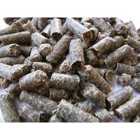 sugar Beet pulp thumbnail image