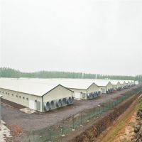 Light steel structure prefabricated poultry house for 10000 chickens thumbnail image