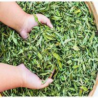Stevia Dry Leaves Natural Sweetener