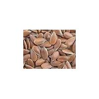 Flax Seed Plant Extract