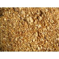Soybean Gluten Meal 48% Feed Grade thumbnail image