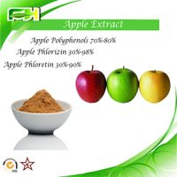 Factory Supply Apple Extract Apple Polyphenols. Apple Phlorizin. Apple Phloretin