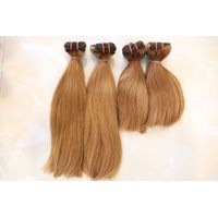Hair Weft Jen 04 Classic Color Hair