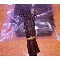 BLACK VANILLA | VANILLA BEANS FOR SALE