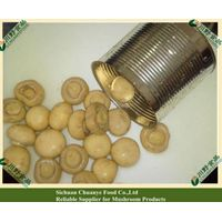 Canned Champignon in tins 400g