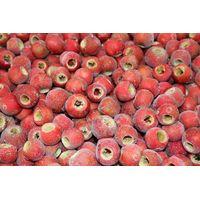 Frozen Hawthorn Berry