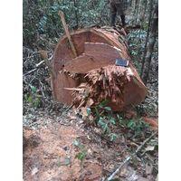 MKB Round logs
