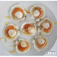 Half shell sea scallops