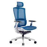 Office Chair, Executive Office Chair (Y001-A9801)