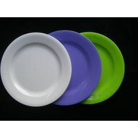 PS/PP plastic plate