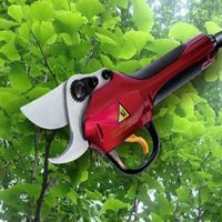 Professional Garden Cutting Set.Pole Tree Pruner,Shears,Secateurs thumbnail image