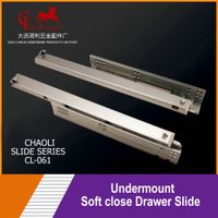 Undermount soft close slide CL-061