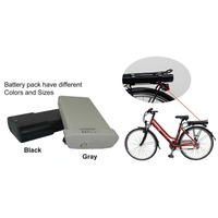 Rechargeable Perma Battery Pack Equipped With Smart Bms For E-bikes