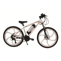new mountain electric bicycle for sale thumbnail image