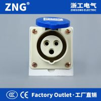 250V 16Amp 3Pin Surface Industrial Socket, Single Phase Three Poles Wires Socket For Industrial Uses