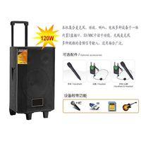 Portable PA speaker,Wireless Karaoke Equipment TA-80