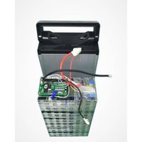 Pro-Greenergy 48V 20Ah lithium ion battery pack