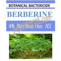 4% Berberine AS, biopesticide, botanic bactericide, natrual, organic thumbnail image