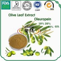 natural antioxidant oleauropein olive leaf extract