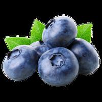 Blueberry Bilberry Huckleberry Fresh Fruits From Peru