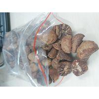 BETEL NUTS thumbnail image