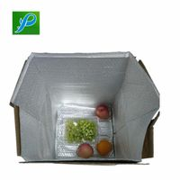 Cool Packaging Vanpor Thermal Insulated Bubble Box Liner For Protection