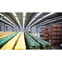 Heineken, Kronenbourg 1664 & Corona Extra Beer Wholesale thumbnail image