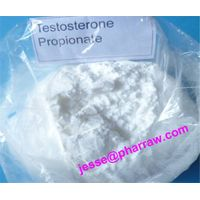 Testosterone Propionate 98% For Body Building