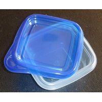 Plastic storage food box