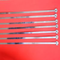Steel Strapping For Heavy Duty Packing thumbnail image