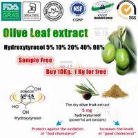 Super natural anti-oxidant Hydroxytyrosol olive leaf extract