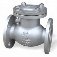 Steel swing check valves