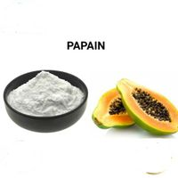 Sell 100% Pure Natural Papain Powder CAS NO. 9001-73-4